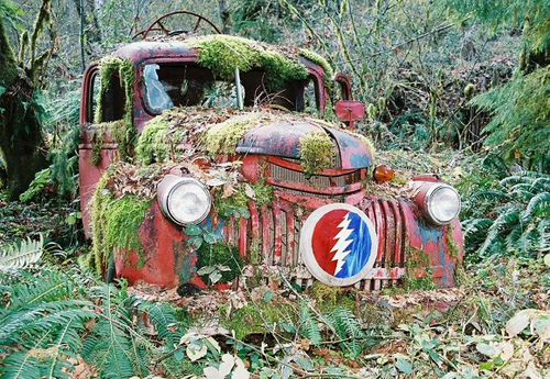 My Life is Like the Grateful Dead